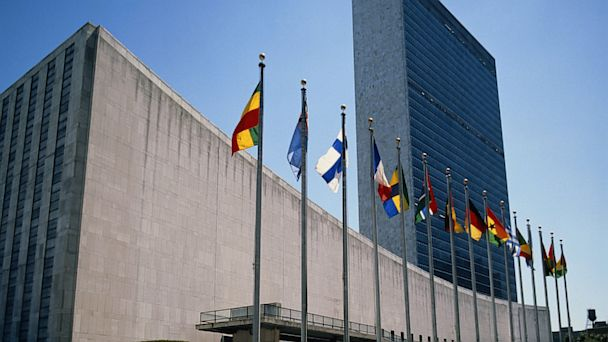 Will the United Nations Be Reformed?
